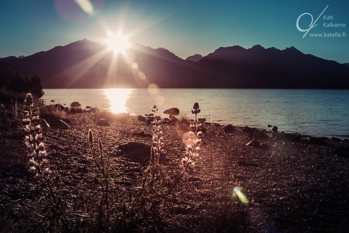 Time for contemplating. Lake Manapouri, New Zealand. Photographer Kati Kalkamo.